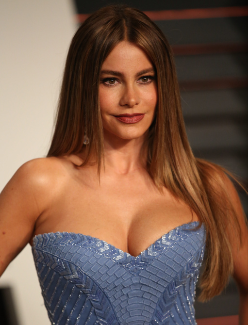 sofia vergara boobs
