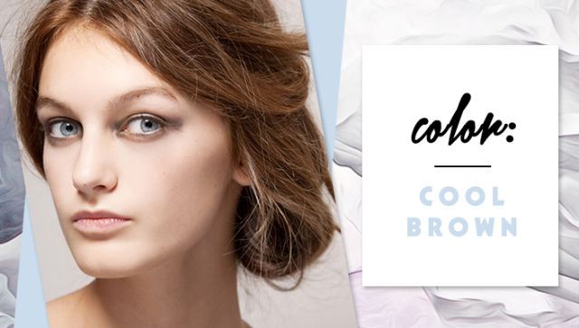 STYLECASTER | Simple Hair Color Chart for Every Shade | Cool Brown