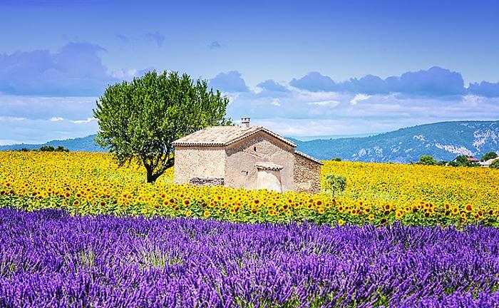 جنوب فرنسا