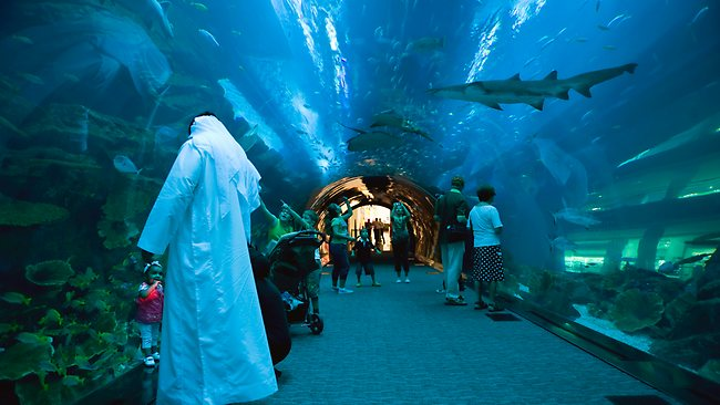 دبي أكواريوم